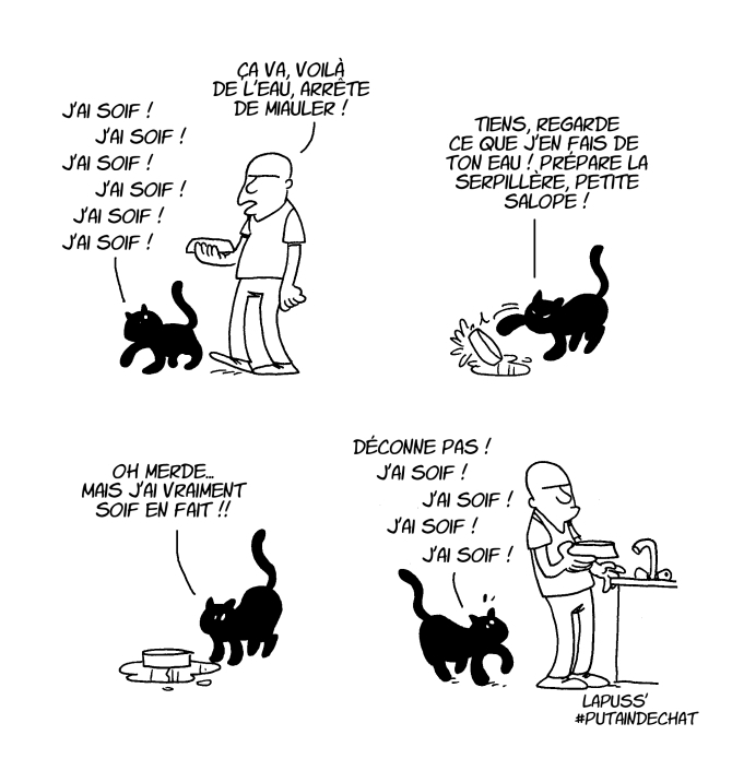 chat-11