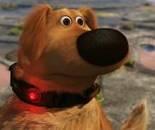 dug-the-talking-dog-up-e1348457215451